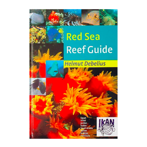 DJM Red Sea reef guide