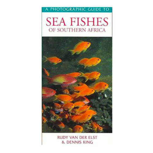 DJM Sea Fishes Southern Africa fish guide
