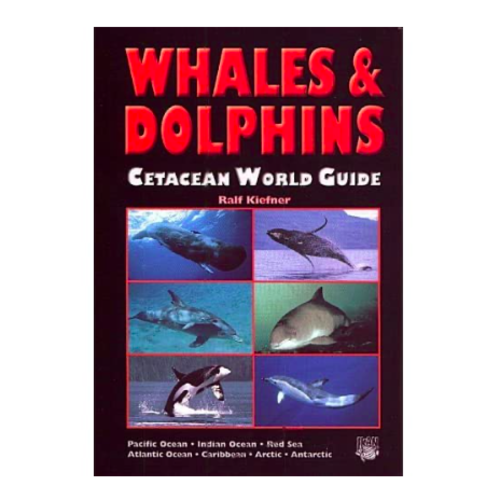 DJM Whales and Dolphins world guide