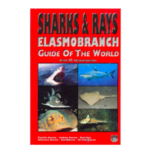 DJM Sharks and Rays world guide