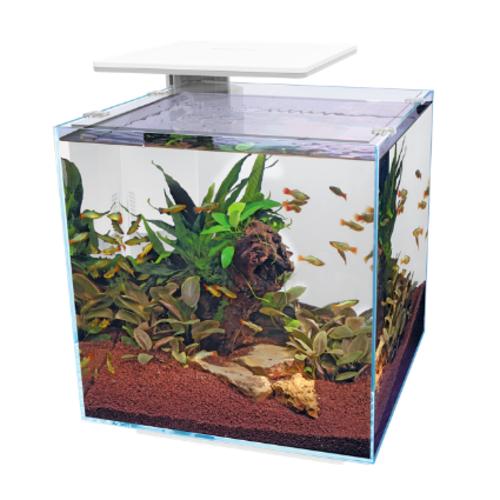SuperFish SuperFish QubiQ 60 pro wit