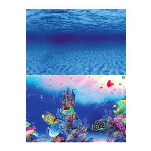 SuperFish SuperFish Deco poster f6 150x61 cm