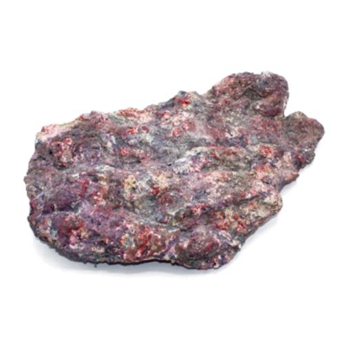 Dutch Reef Rock Dutch Reef Rock 37 3,3 Kg 41 x 28 x 10 cm