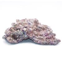 Dutch Reef Rock 56 4,1 Kg 41 x 31 x 11 cm