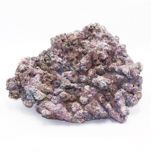 Dutch Reef Rock Dutch Reef Rock 59 3,8 Kg 31 x 28 x 17 cm