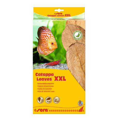 Sera Sera Catappa Leaves XXL 30 – 35 cm 10 stuks