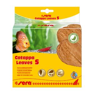 Sera Sera Catappa Leaves S 10 – 15 cm 10 stuks