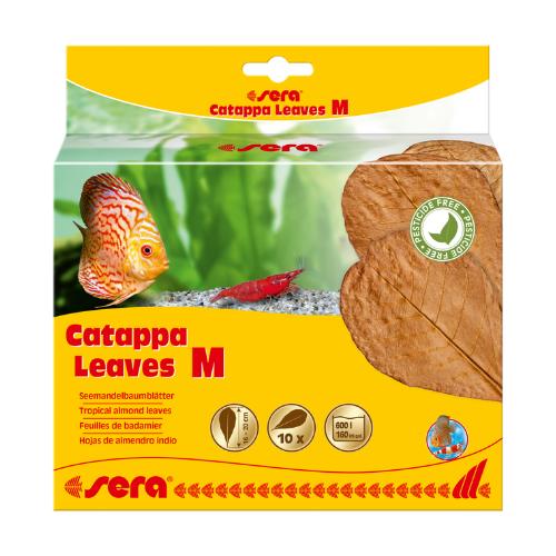 Sera Sera Catappa Leaves M 16 – 20 cm 10 stuks
