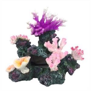 Blue Belle Pacific Blue Belle Pacific Ocean Rock with Coral 2 25 cm