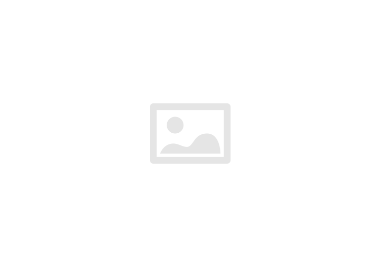 Vijver (webshop)