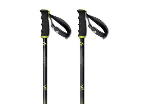 FISCHER SPORTS Fischer Rc4 Sl Alu 7075 Pole