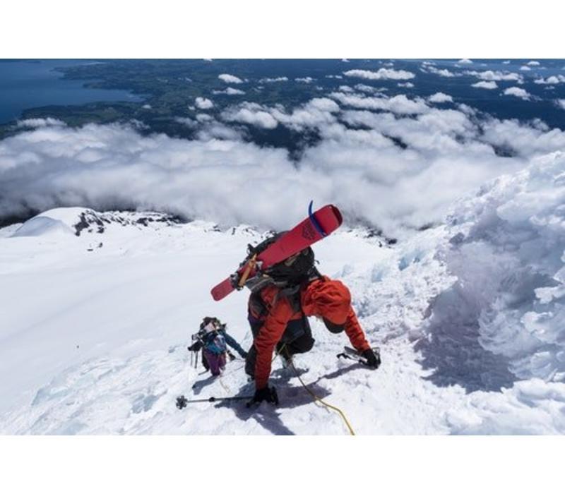 Camox Freebird Ski