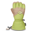 DAKINE Dakine Team Excursion Gore-Tex Glove