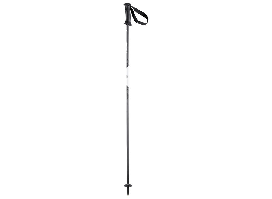 Joy Ski Pole