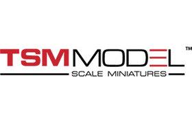 True Scale Models