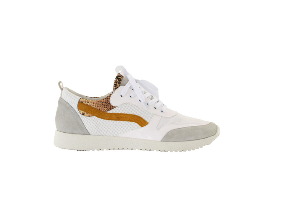 Sneaker Roos white with snake print