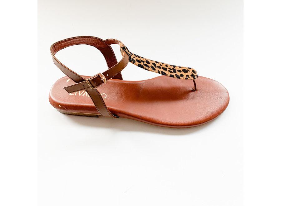 Sandal Emma cheetah