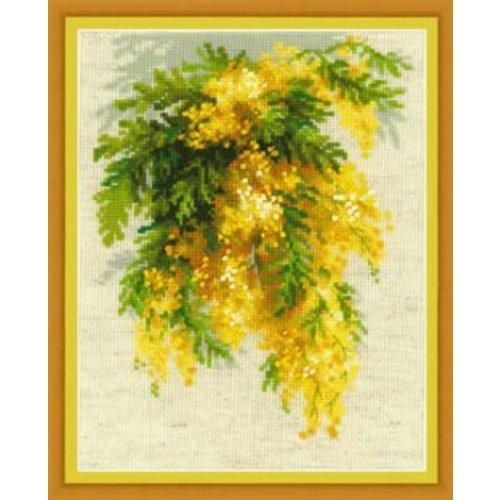 RIOLIS Mimosa