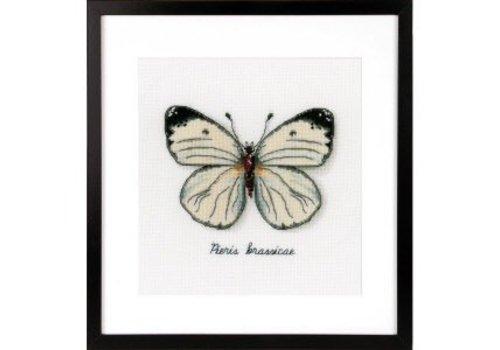 Vervaco Telpakket kit LMV Witte vlinder