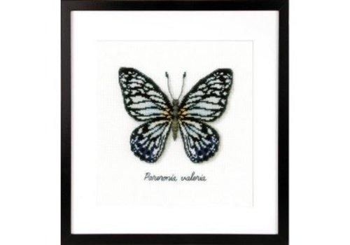 Vervaco Telpakket kit LMV Blauwe vlinder