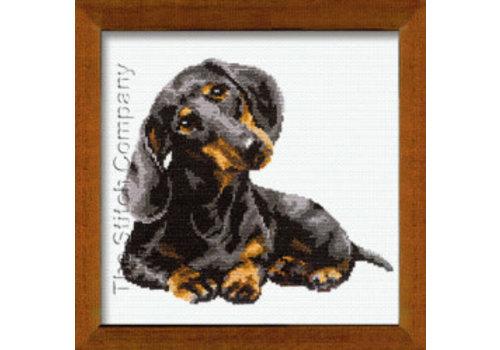 RIOLIS Badger Dog