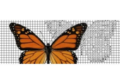 Papilion Papilion patroon 1 - kleuren - 24 x 36 cm