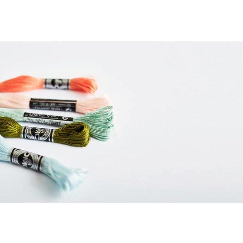 DMC Coloris borduurgaren art 517
