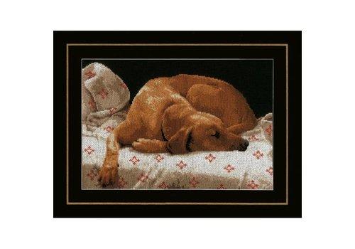 Lanarte Slapende hond