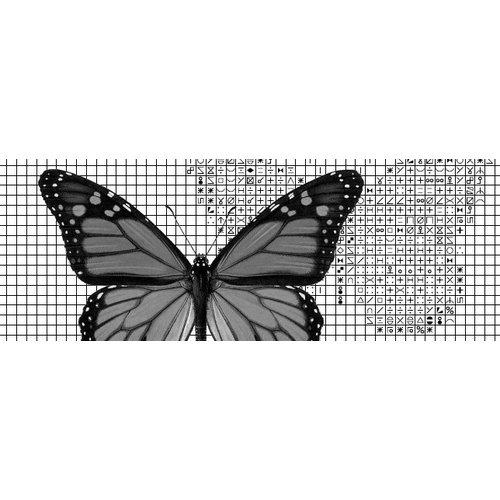 Papilion Borduurpatroon van foto 2 - zwart-wit - 36 x 48 cm