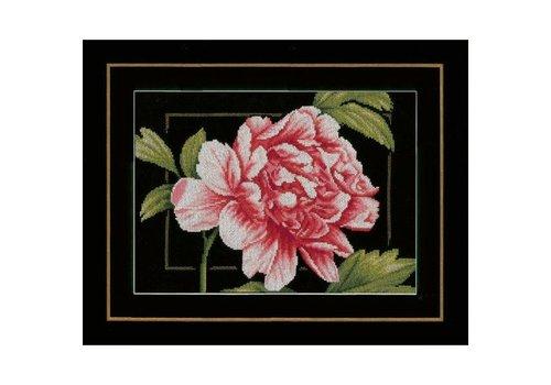 Lanarte Roze Roos
