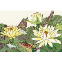 Japanese Woodblock Prints - Water Lily Blooms