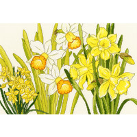 Japanese Woodblock Prints - Daffodil Blooms