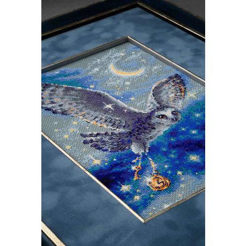 RIOLIS Borduurpakket Magic Owl - RIOLIS
