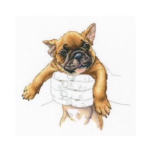 RTO Borduurpakket Warmth In Palms - French Bulldog - RTO