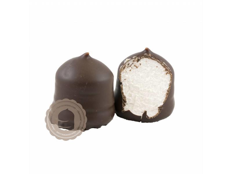 Chocozoenen Puur Chocolade