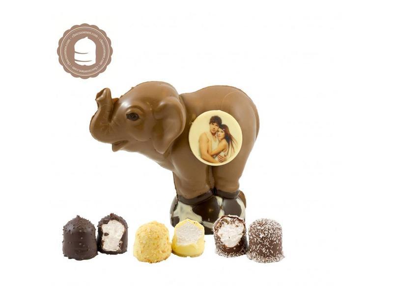 Chocolade Olifant met Foto en  6 Zoenen