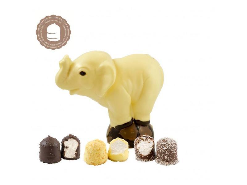 Chocolade Olifant met  6 Chocozoenen