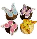 Chocozoen Vlinders
