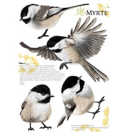 Myrte Muursticker Chickadee