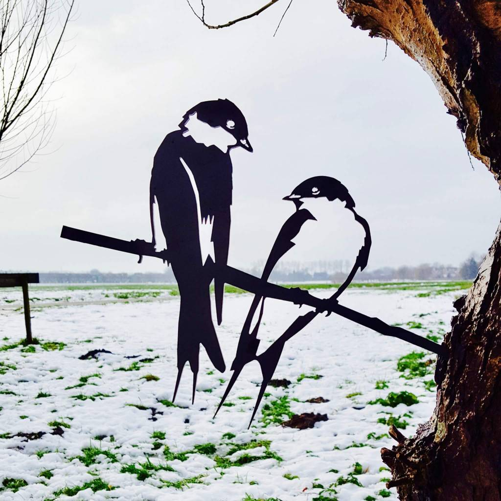 Bird Silhouette Swallow couple
