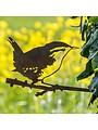 Vogel Silhouette Zaunkönig