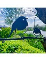 Bird Silhouette Robin Duo