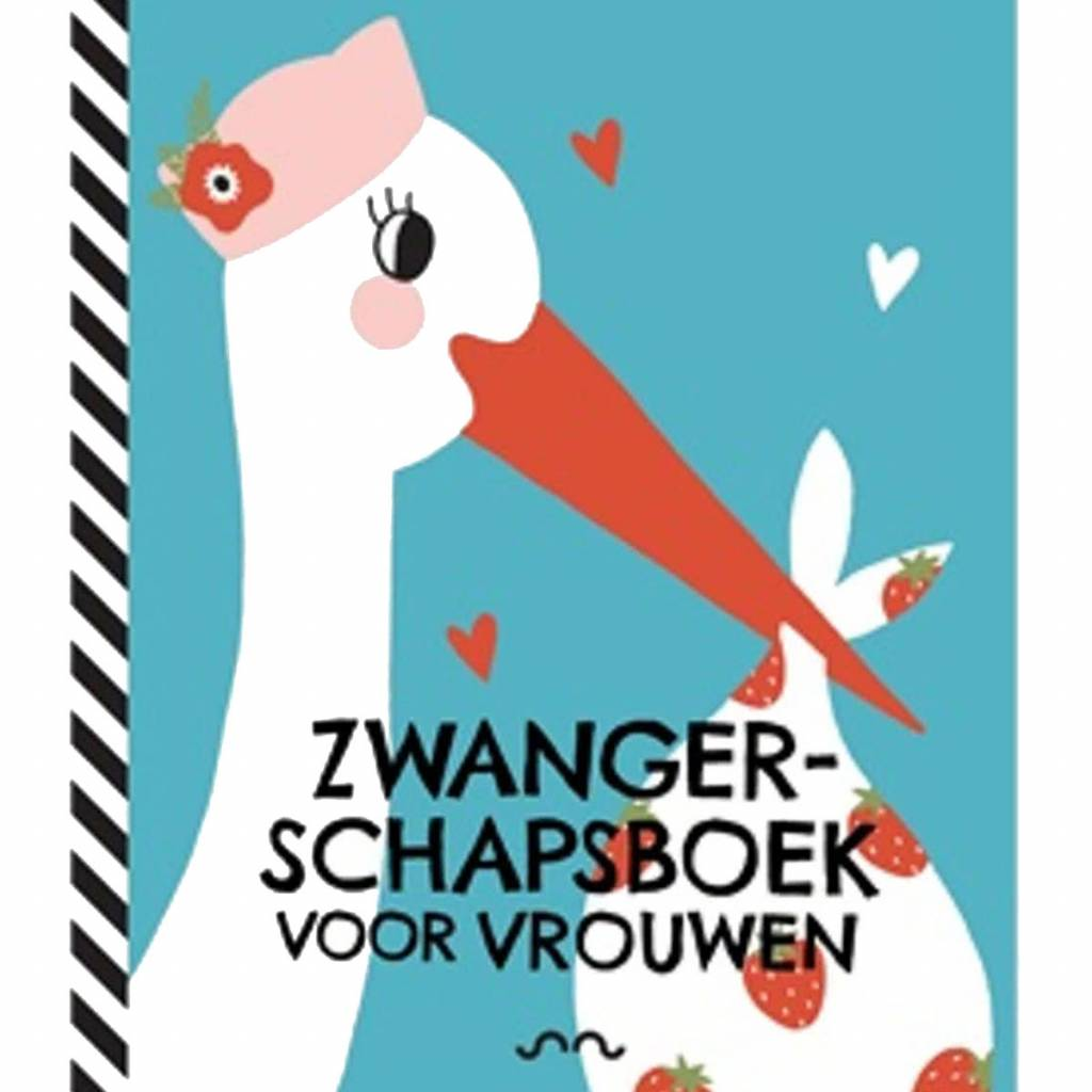 Pregnancy book for women Dutch