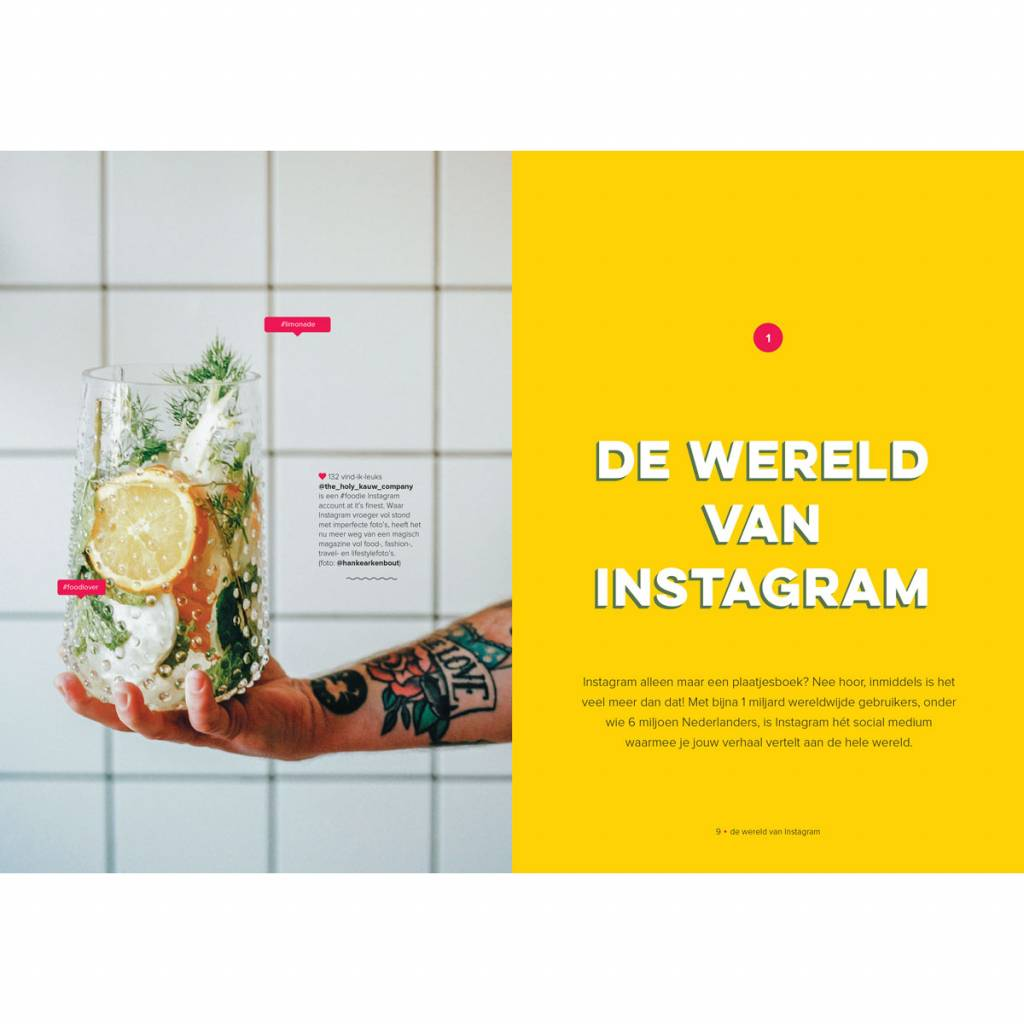 Instaproof - Success on Instagram Dutch