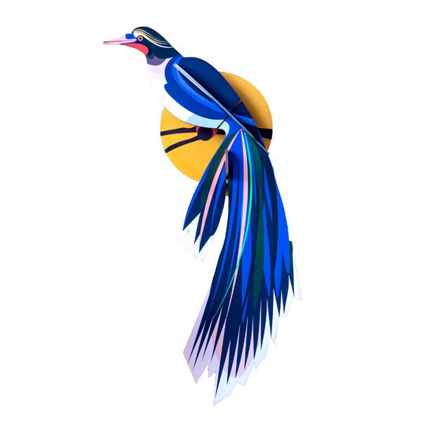 Paradiesvogel Flores