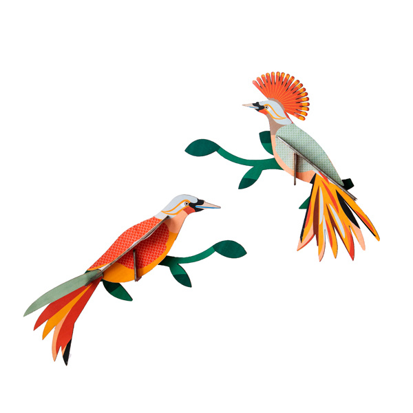 Paradise Bird Obi