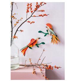 Studio ROOF Paradise Bird Obi