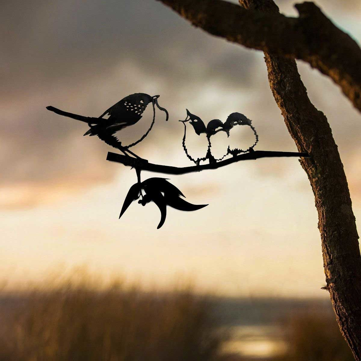 Blue Wren with Babies