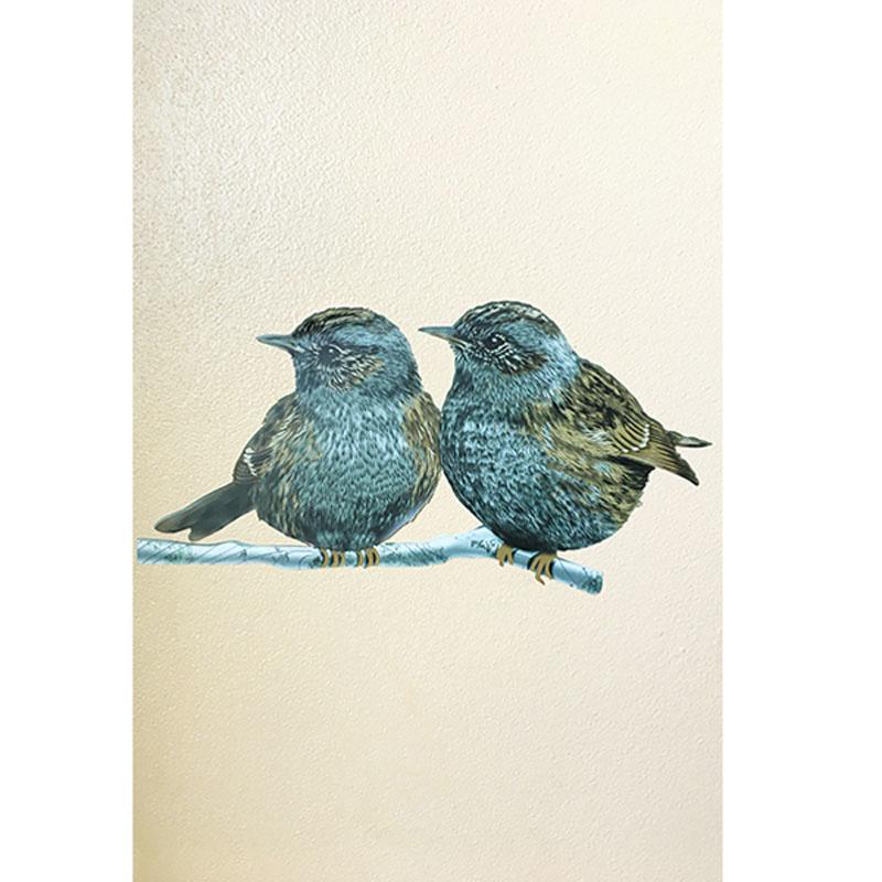 Wall stickers Garden bird mix