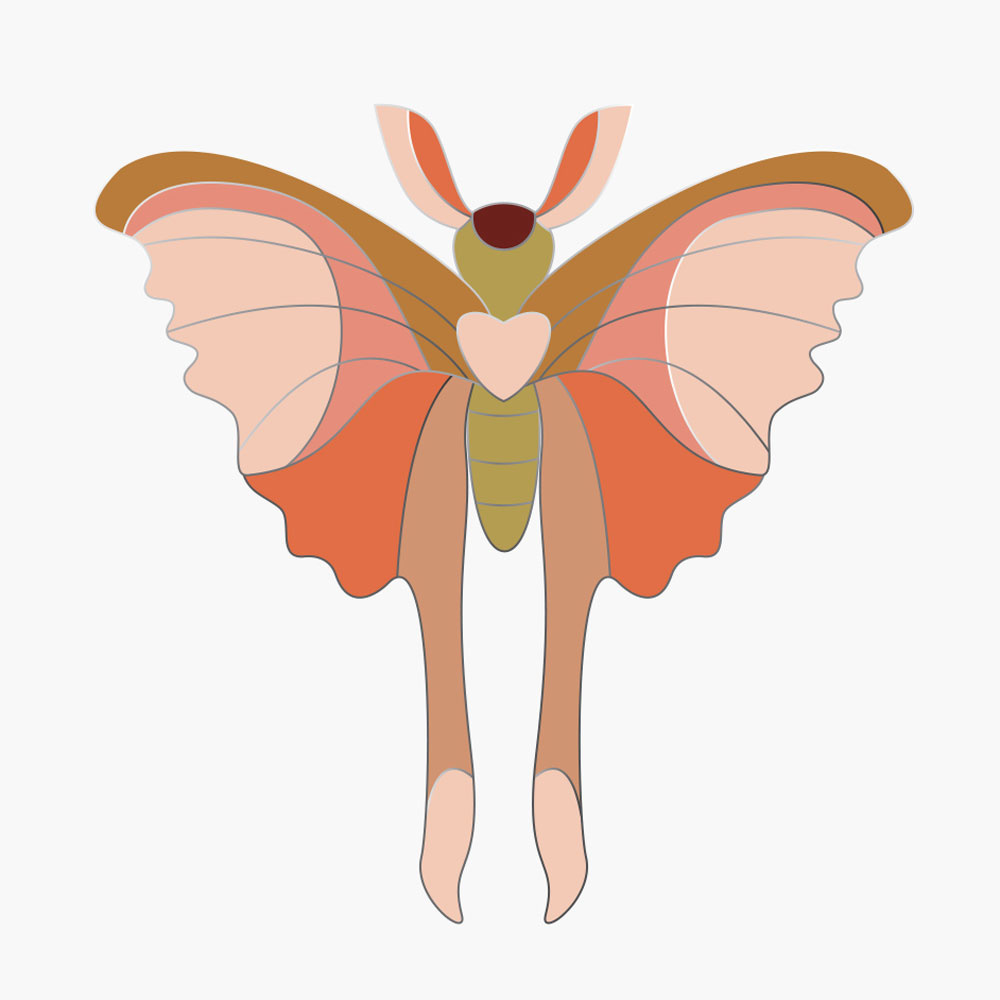 Pin Comet Butterfly